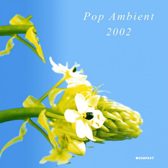 pop ambient 2002 - resize to 500x500